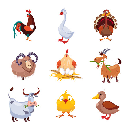 natural cock: Farm birds and animals flat style vector collection