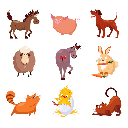 funny animals: Domestic birds and animals flat style vector collection
