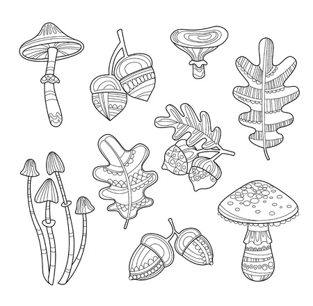 grebe: Vector set of leaves, acorns and mushrooms in handdrawn style Illustration