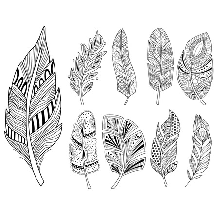 lightness: Ornamental Feathers in Handdrawn Style. Vestor Illustration