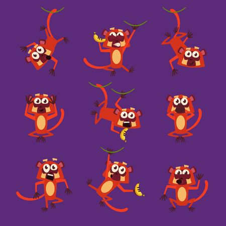 squinting: Monkeys in Different Poses, Vector Illustrations in Flat design