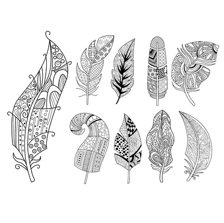 etnic: Ornamental Feathers in Handdrawn Style. Vestor Illustration