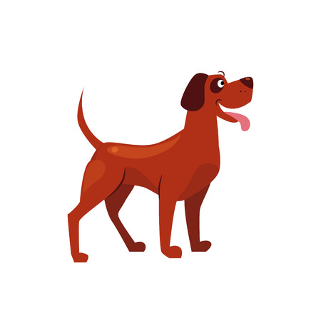 grownup: Standing Brown Dog with a Spot on Ear. Flat Vector Illustration