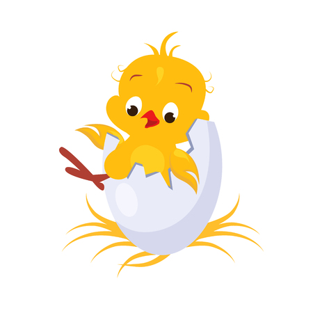 poult: Cartoon Chicken in an Egg. Vector Picture Illustration