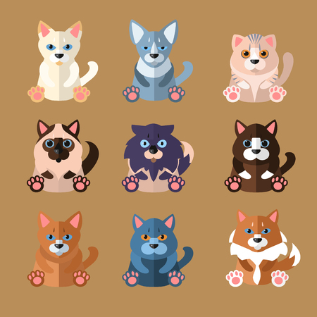 breeds: Set of flat popular breeds of cats icons. Vector illustration.