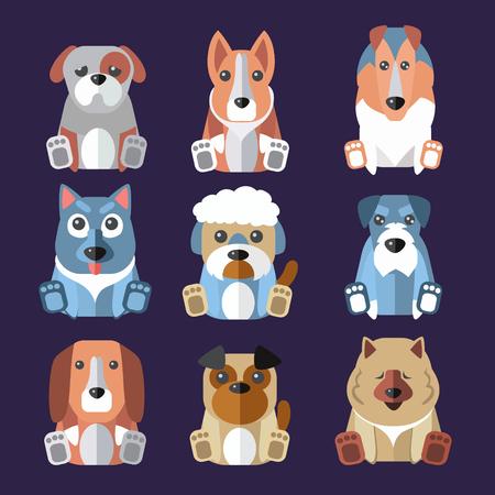 pembroke welsh corgi: Set of flat popular breeds of dogs icons. Vector illustration.