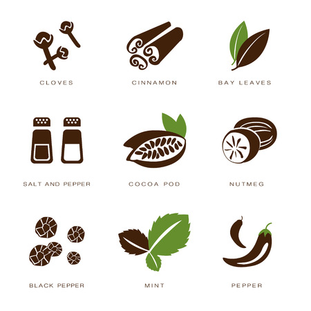 condiments: Colorful web icon set spices, condiments and herbs