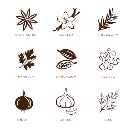 mint leaves: Colorful web icon set spices, condiments and herbs