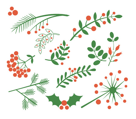 holly leaf: Red Berries, Fir and Leaves. Flat Vector Illustration Set