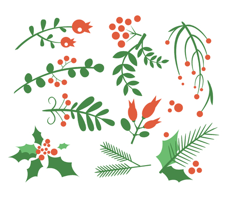 omela: Red Berries, Branches Fir and Leaves. Flat Vector Illustration Set