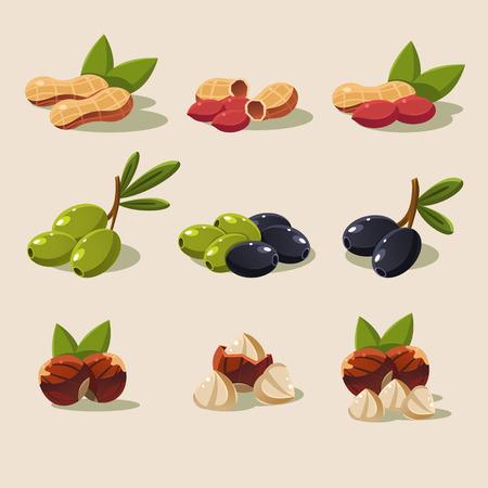 filberts: Olives and nuts, vector illustration modern design set