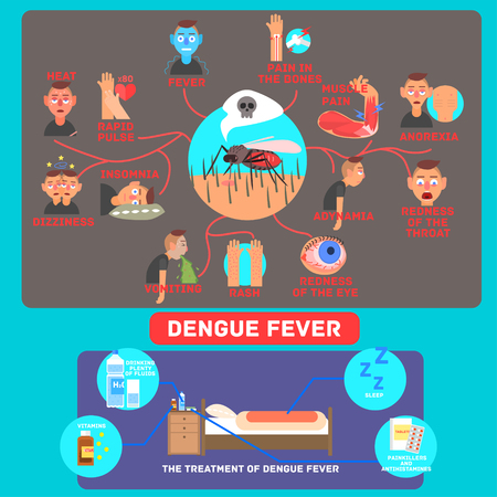 malaria: Dengue Fever Infographics. Flat Vector Illustration Poster the symptoms and treatment of diseaseb