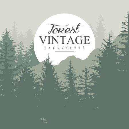 pine forest: Vintage Pine Forest hand-drawn Background. Vector Illustration