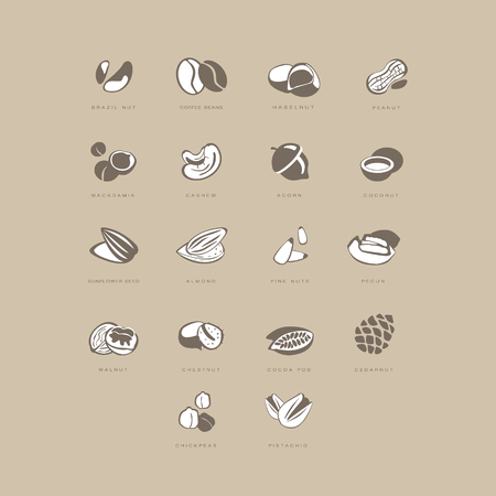 brazil nut: Nuts Icon Set. Vector Illustartion Collection pastel shades of beige