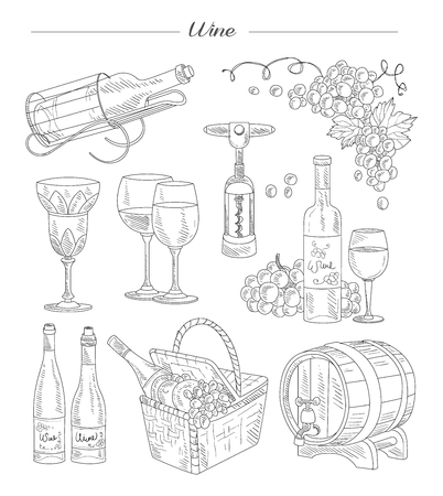 Wine and Accessories, Hand drawn Vector Collection set