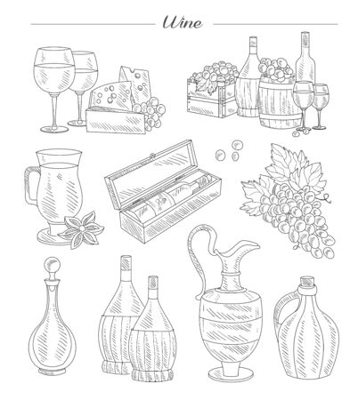 Wine and Grapes, Hand drawn Vector Collection set