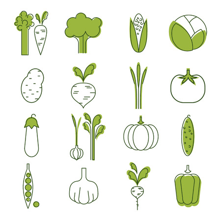 handdrawn: Simple Vegetable Set. Handdrawn Vector Illustration set