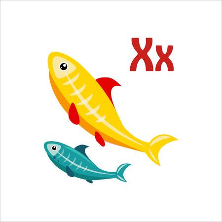 tetra: X-Ray Tetra. Funny Alphabet, Colourful Animal Vector Illustration