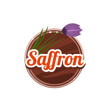 spice: Saffron Spice. Decorative Vector Illustration. Stickers with wooden texture and names of spices