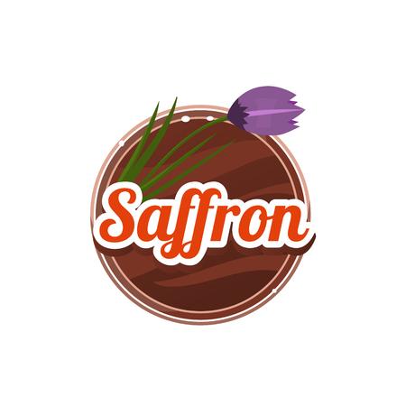 �pices: Saffron Spice. Vector Decorative Illustration. Autocollants avec texture bois et les noms d'�pices