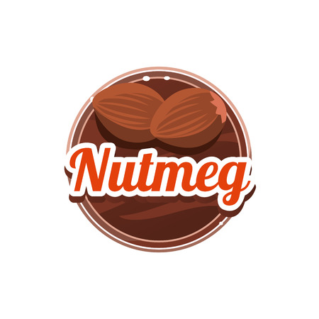 nutmeg: Nutmeg Spice. Decorative Vector Illustration. Stickers with wooden texture and names of spices