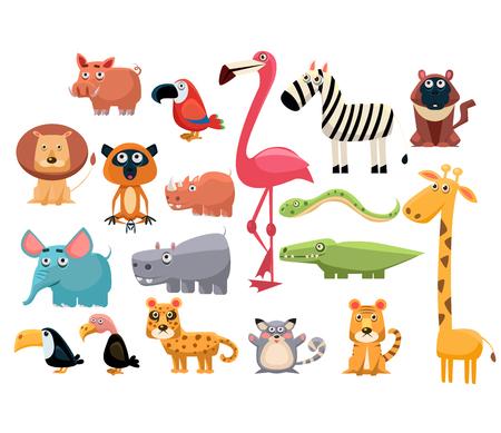 animal head giraffe: African Animals big set.
