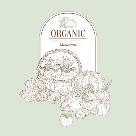 fruit basket: Organic, Hand drawn Vector Illustration Banner, Organic food sketch background. Vector frame design Illustration