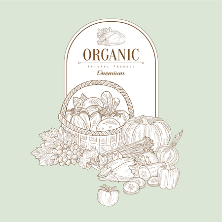 panier fruits: Organique, tiré par la main Illustration Vecteur Bannière, Organic fond esquisse alimentaire. conception du cadre de Vector