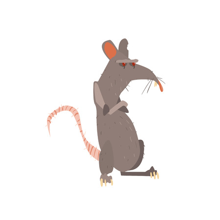 legs crossed: Rat Standing On Two Legs With Arms Crossed Flat Cartoon Stylized Vector Illustration Illustration