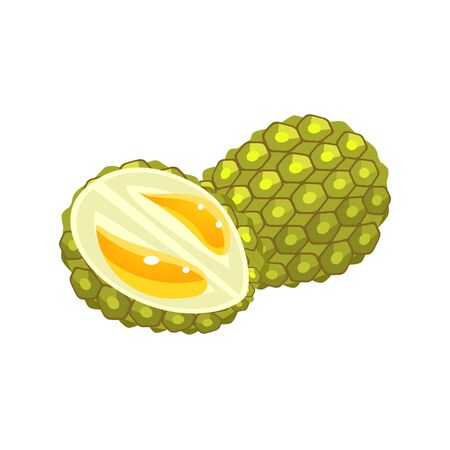 simplified: Durian Flat Vector Sticker Simplified Design Isolated On White Backgroung Illustration