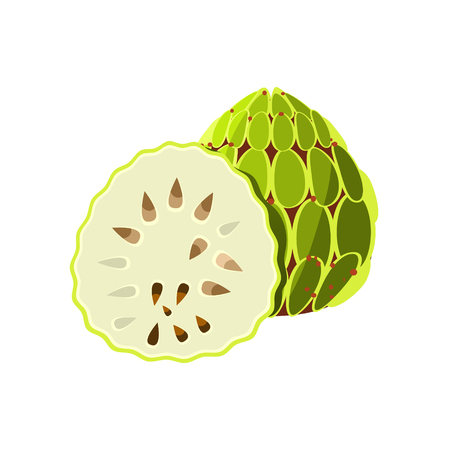 simplified: Soursop Flat Vector Sticker Simplified Design Isolated On White Backgroung