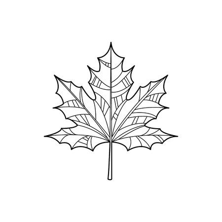Maple Leaf Hand Drawn