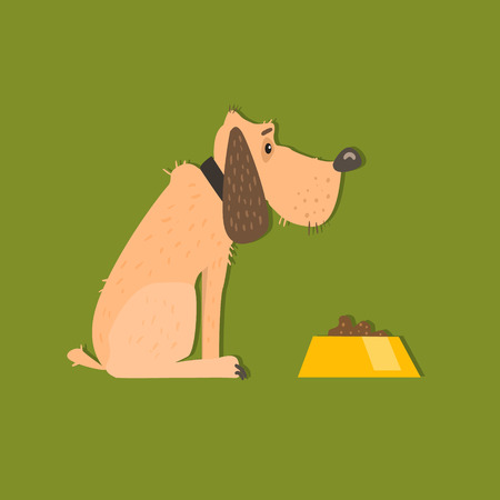 bloodhound: Bloodhound With Food Bowl Funny Flat Vector Illustration In Creative Applique Style