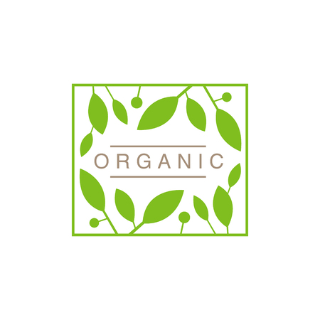 concise: Frame With Leaves And Fruit Organic Product Logo Cool Flat Vector Design Template On White Backgeound