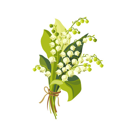 Lily Of The Valley Hand Drawn Realistic Flat Vector Illustration In Artistic Painting Style On White Background Illustration