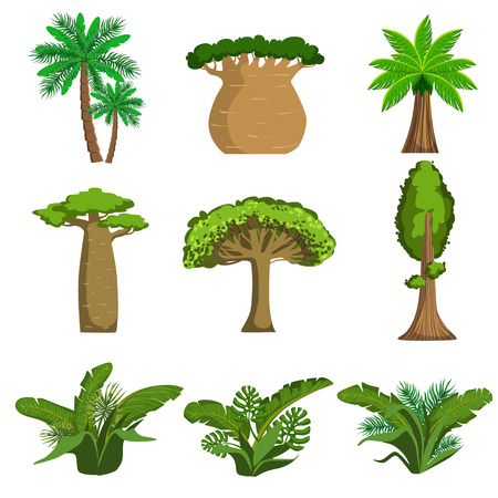 Jungle Trees And Plants Set Of Simple Style Flat Vector Illustrations On White Background