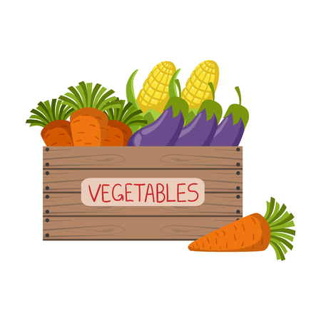 Fresh Vegetables Crate Flat Simple Colorful Design Vector Illustration Illustration