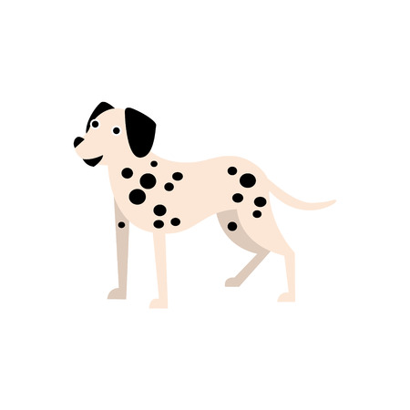 dalmatian: Dalmatian Dog Breed Primitive Cartoon Illustration In Simplified Vector Design Isolated On White Background