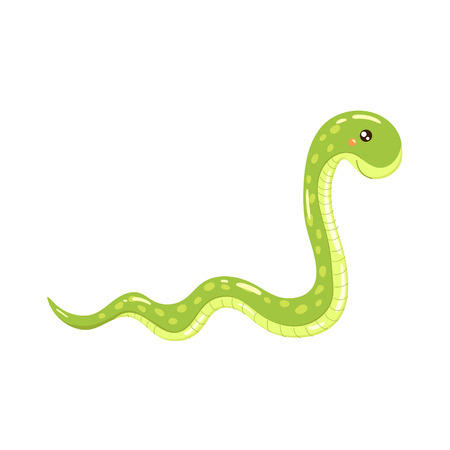 boa: Boa Snake Realistic Childish Illustration In Simple Cute Vector Design Isolated On White Background Illustration