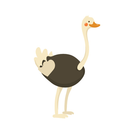 biggest animal: Ostrich Realistic Childish Illustration In Simple Cute Vector Design Isolated On White Background Illustration