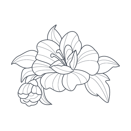 dog rose: Dog Rose Flower Monochrome Drawing For Coloring Book Hand Drawn Vector Simple Style Illustration Illustration