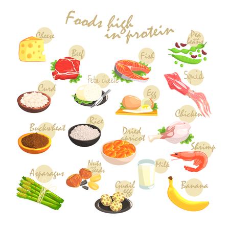 Alimentos ricos en proteínas Mano-Drawn cartel realista con texto de información de diseño vectorial