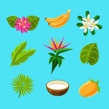 forest clipart: Tropical Plants And Fruits Collection In Simple Realistic Cartoon Flat Vector Design Isolated On Blue Background