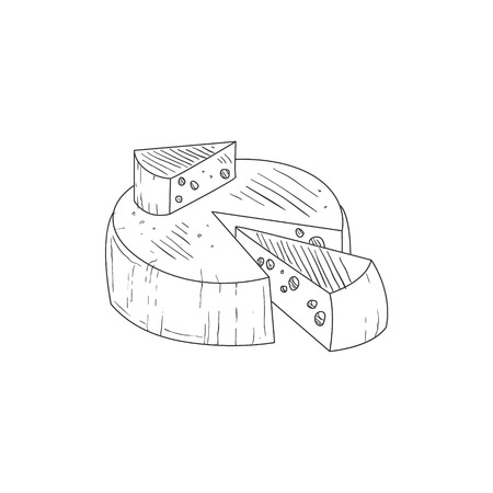 sketch out: Round Cheese With A Segment Cut Out Hand Drawn Realistic Detailed Sketch In Classy Simple Pencil Style On White Background