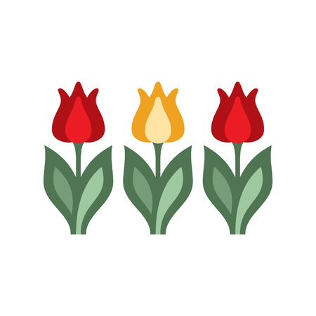tulips isolated on white background: Holandaise Tulips Flat Bright Color Primitive Drawn Vector Icon Isolated On White Background