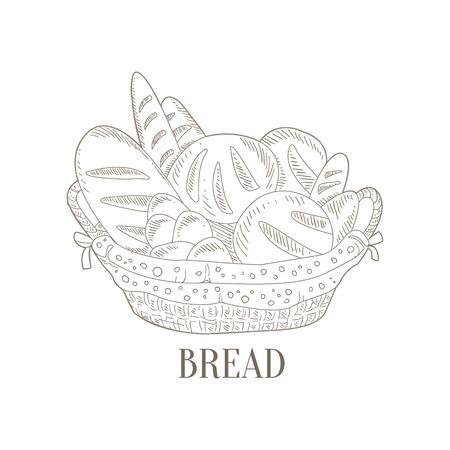 wicker basket: Different Bread In Wicker Basket Hand Drawn Realistic Detailed Sketch In Classy Simple Pencil Style On White Background
