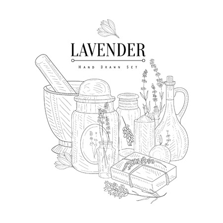 phial: Lavender Natural Product Hand Drawn Realistic Detailed Sketch In Classy Simple Pencil Style On White Background
