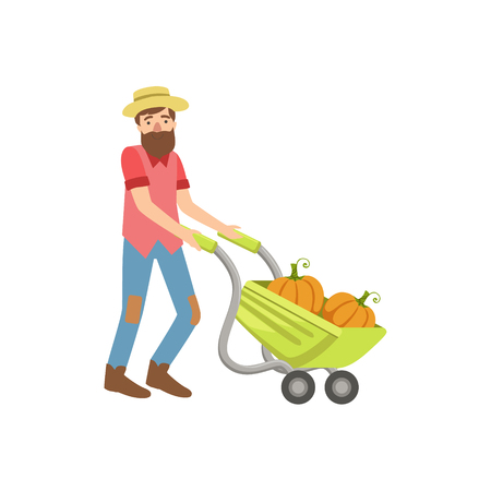 wheel barrel: Bearded Man Rolling A Wheel Barrel With Pumpkins Simple Childish Flat Colorful Illustration On White Background