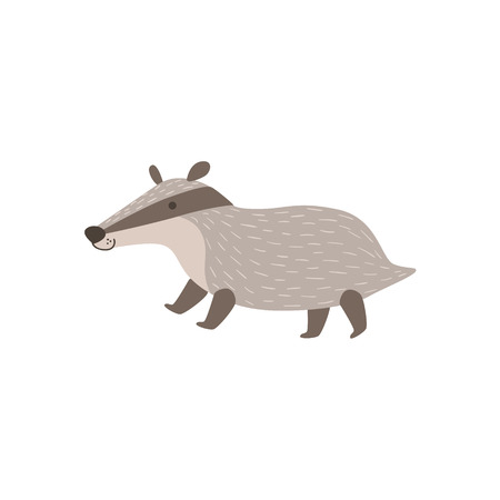 badger: Grey Badger Walking Stylized Cute Childish Flat Vector Drawing Isolated On White Background Illustration