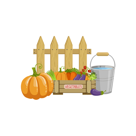 Crate Of Vegetables, Bucket With Water And A Fence Simple Realistic Bright Flat Colorful Illustration Isolated On White Background